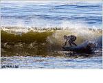 Canon EOS 40D - Surfer