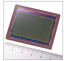 Sony 24.81-Megapixel Full-Frame DSLR Censor