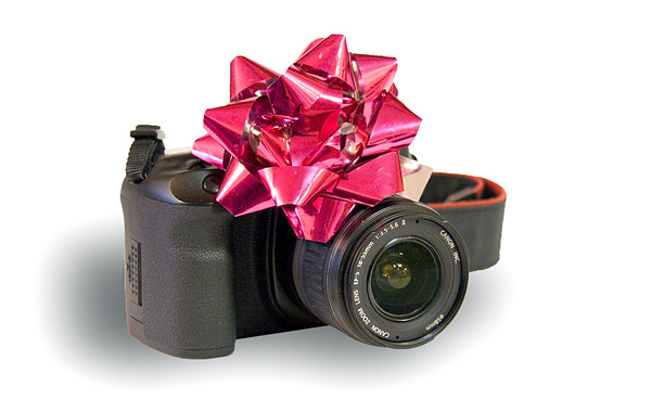 Holiday Digital Camera Guide