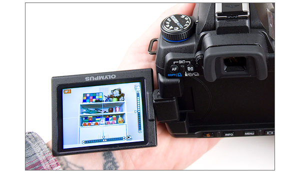 Olympus E-30 2.7-inch tilt/swivel LCD in Live View mode