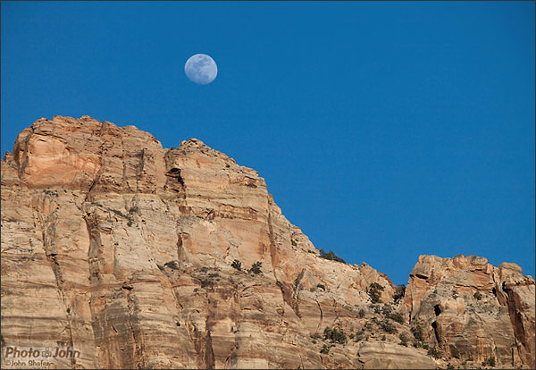 Canon EOS 5D Mark II - Moon Over Zion