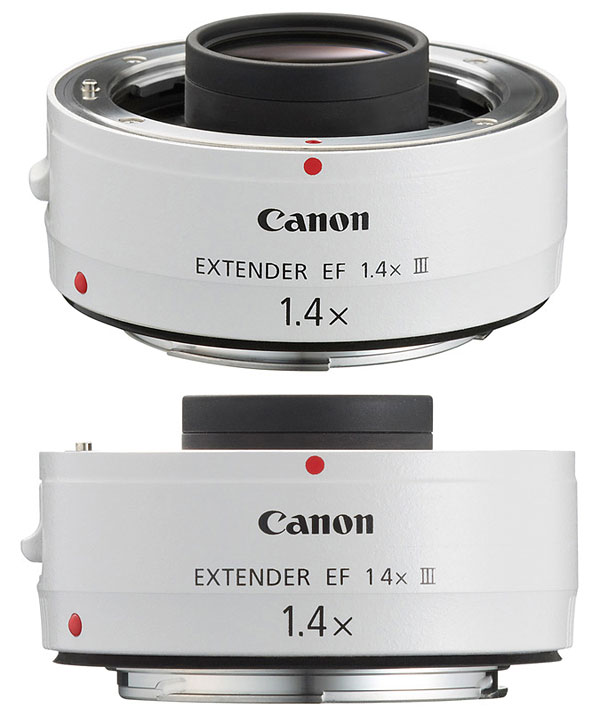 Equipment: Canon EOS-1V HS, Canon EF 500mm f/4L IS USM, Canon EF Extender 2X The Canon EF 2x II Extender is an easy and very affordable way to
