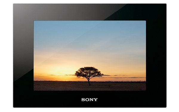Sony DPF-VR100