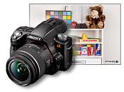 Sony Alpha A55 Studio Sample Photos