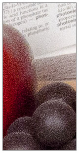 Nikon D7000 - 100 percent sample at 100%