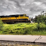 Olympus E-P3 - Alaska Train Photo
