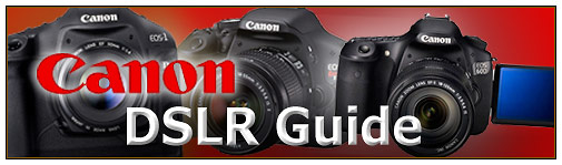Best Canon DSLR Guide