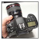 Canon EOS-1D X - First Impressions