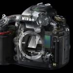 Nikon D800 - Cutaway View