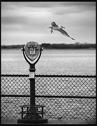 B&W Photo - by paok
