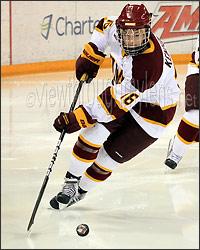 UMD (Minnesota-Duluth) Womens Hockey - by DHMN69