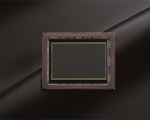Nikon D600 - 24-Megapixel Full-Frame CMOS Sensor