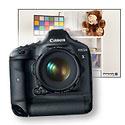 Canon EOS-1D X Studio Sample Photos