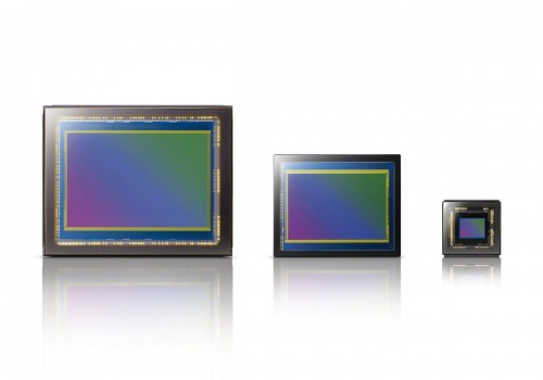 Full-Frame Sensor Size Comparison