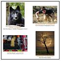 Featured Member Photos – October 22, 2012