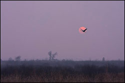 Sunset Crane - by mjs1973