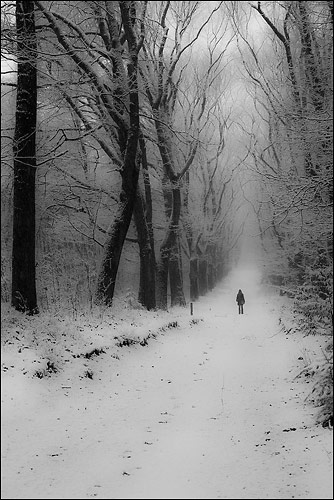 In Winter Wonderland by Ctn