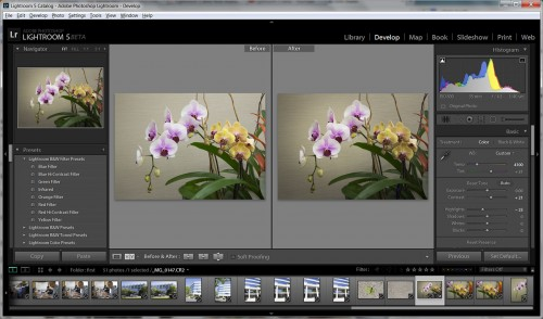 New Radial Gradient Tool In Adobe Lightroom 5 Beta