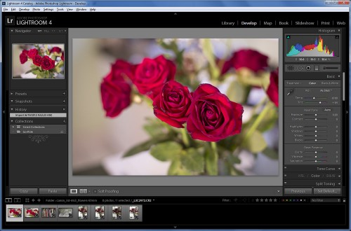 Lightroom 4.4 Software Update Announced