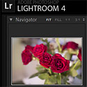 Lightroom 4.4 Update