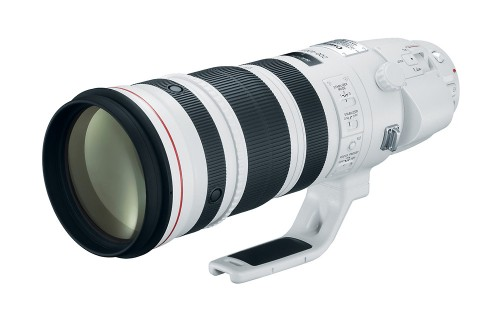 Canon EF 200-400mm f/4L IS USM Zoom Lens
