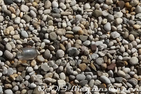 Zeiss Touit 1.8/32 Lens Sample: Rocks Zoomed