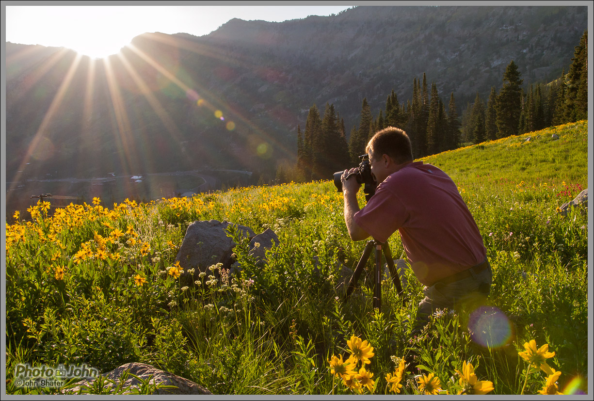 Sigma 18-35mm f/1.8 - Wildflower Photographer