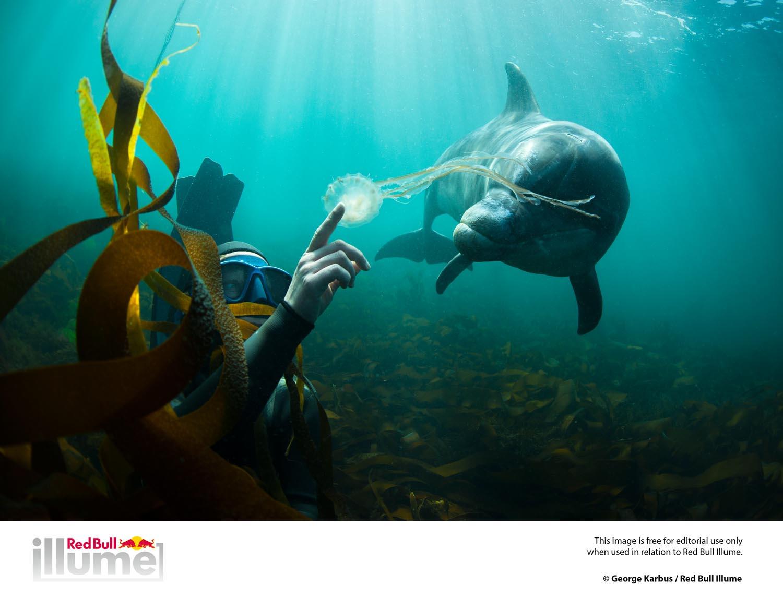 © George Karbus / 2013 Red Bull Illume Spirit Category Finalist Photo
