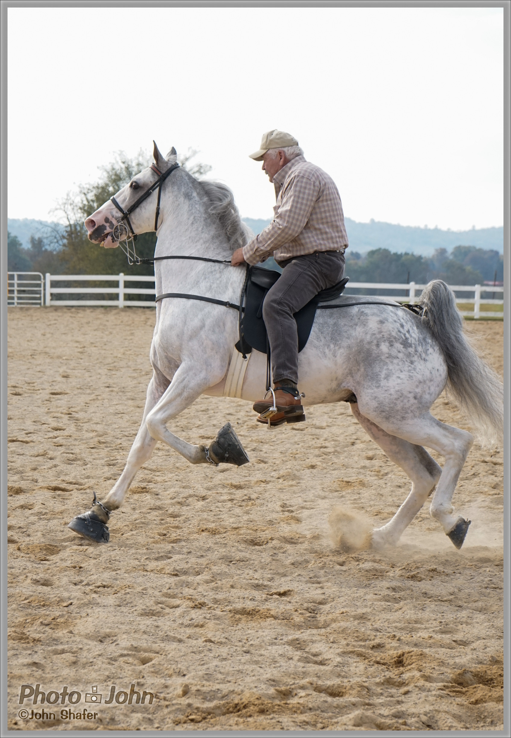Sony Alpha A7 - Tennessee Walking Horse Cantering
