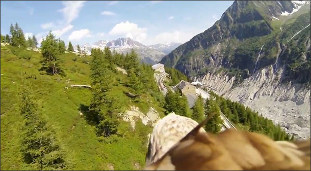 Where Eagles Dare - Bird's Eye POV Aerial Video
