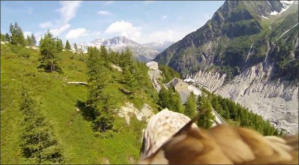 Where Eagles Dare - Bird's Eye POV Aerial Video