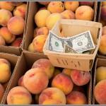 Fujifilm X100S - Farmers Market Peaches