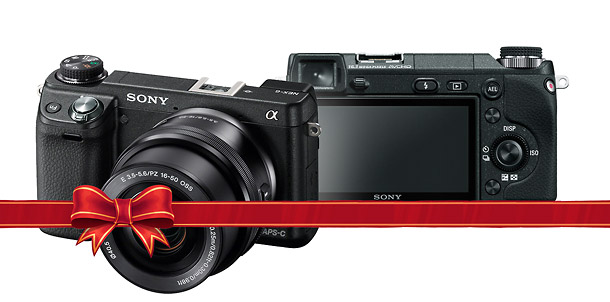 Sony Alpha NEX-6 - Holiday Mirrorless Camera Guide