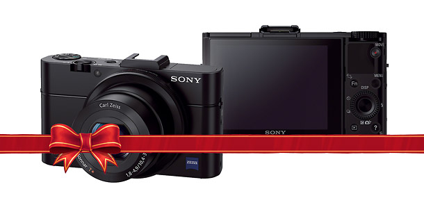 Sony Cybershot HX50V - Holiday Point-and-Shoot Camera Guide